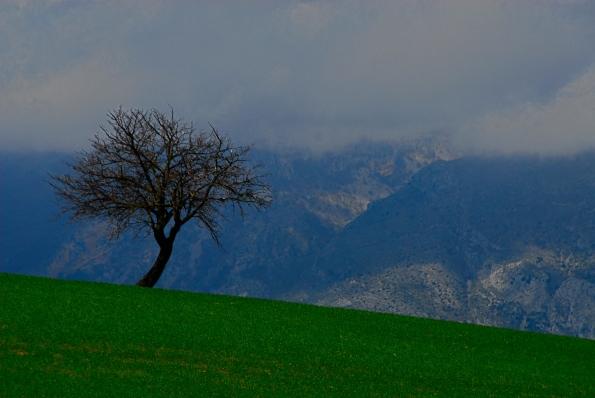 Foto di Valentina Perniciaro