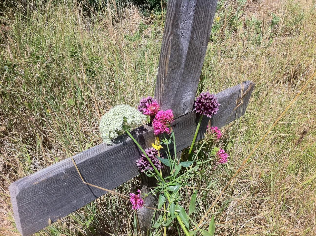 Resoconto Del Viaggio Al Cimitero Degli Ergastolani Nell