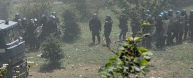 Foto di Valentina Perniciaro _l'assedio nel bosco_
